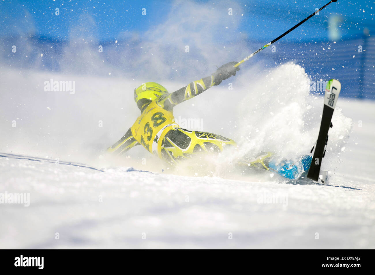 A snow skier falling out of control while racing on the giant slalom course. - Stock Image