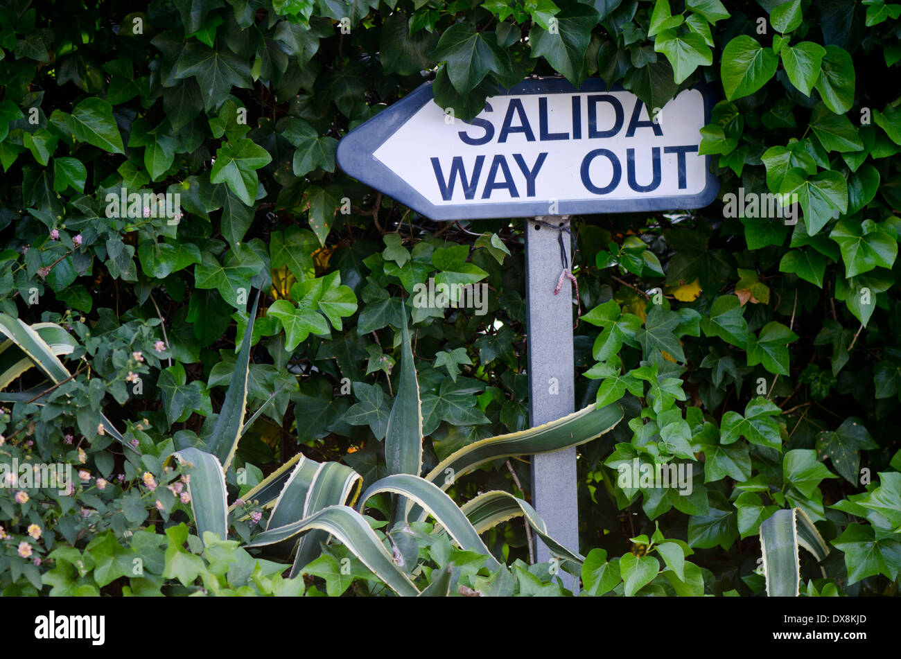Sign directing way out in English and Spanish. Spain. - Stock Image