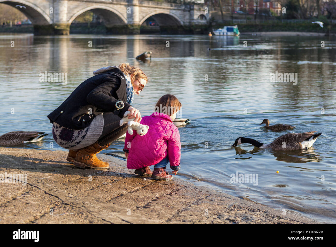 Woman and young girl in pink coat feeding the geese on the banks of the river Thames - Richmond upon Thames, London, UK - Stock Image