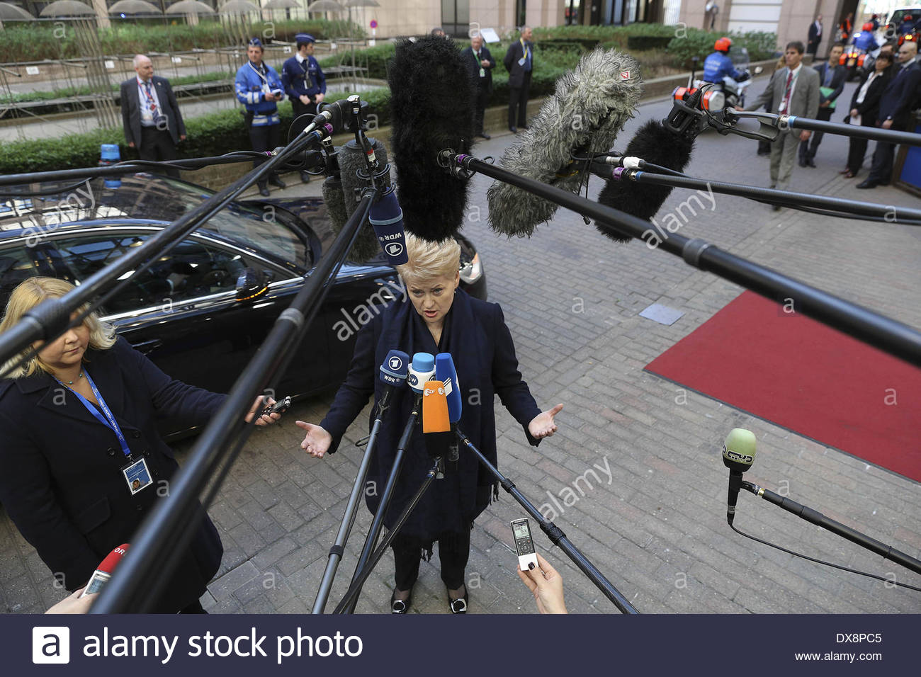 Brussels, BXL, Belgium. 20th Mar, 2014. The President of the Republic of Lithuania Dalia GRYBAUSKAITE arrives to the summit of Heads of State in the European Council HQ in Brussels, Belgium, Thursday 20, 2014. The situation in Ukraine would be 'most prominent'' on the summit agenda for the leaders of the member states of the European Union and the EU's 28 would discuss their response during dinner today. The agenda for Friday focuses on the EU's policies on climate and energy, including plans for completing the international energy market and for developing interconnections. At the end of - Stock Image