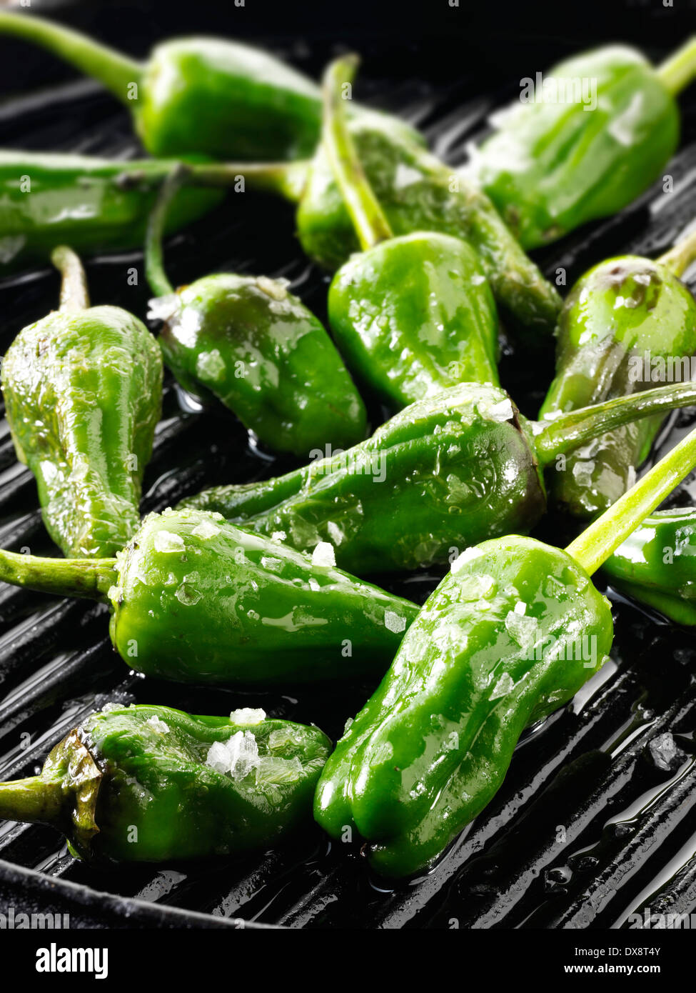 Griddled whole padron chillis - Stock Image