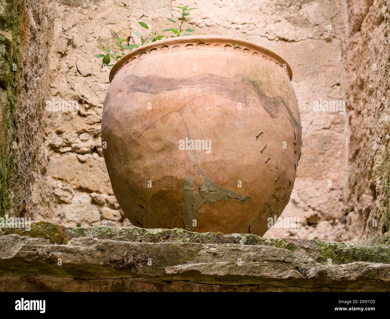 Cracked & Repaired terracotta Planter in Pals. A large planter patched and stapled to repair it stands in a rocky niche in Pals. - Stock Image