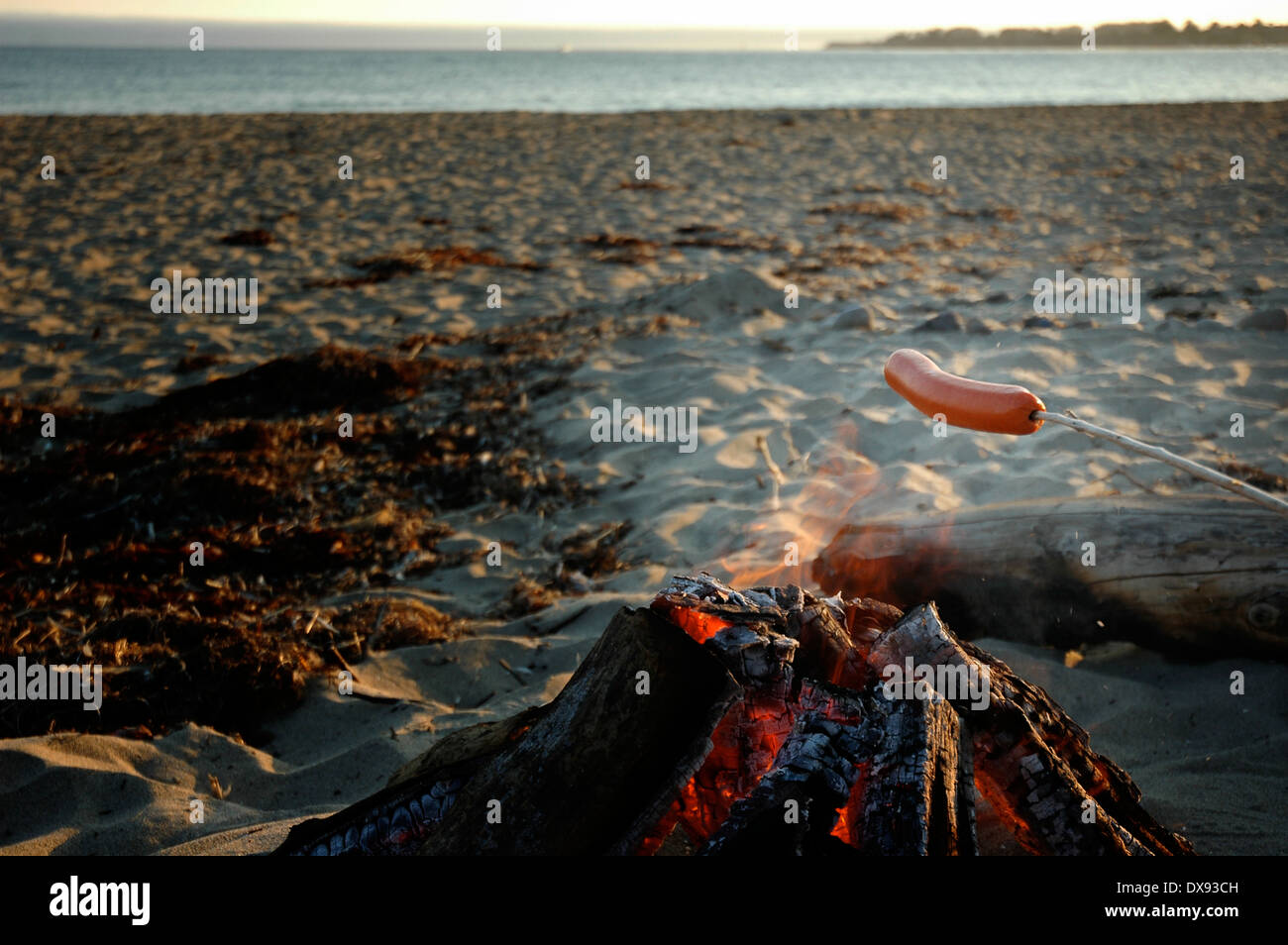 Hot dog roasting over campfire on the beachStock Photo