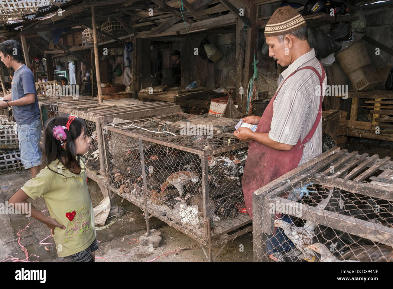 Small girl doing business with the poultry vendor, Bengkulu market, Southwest Sumatra, Indonesia - Stock Image