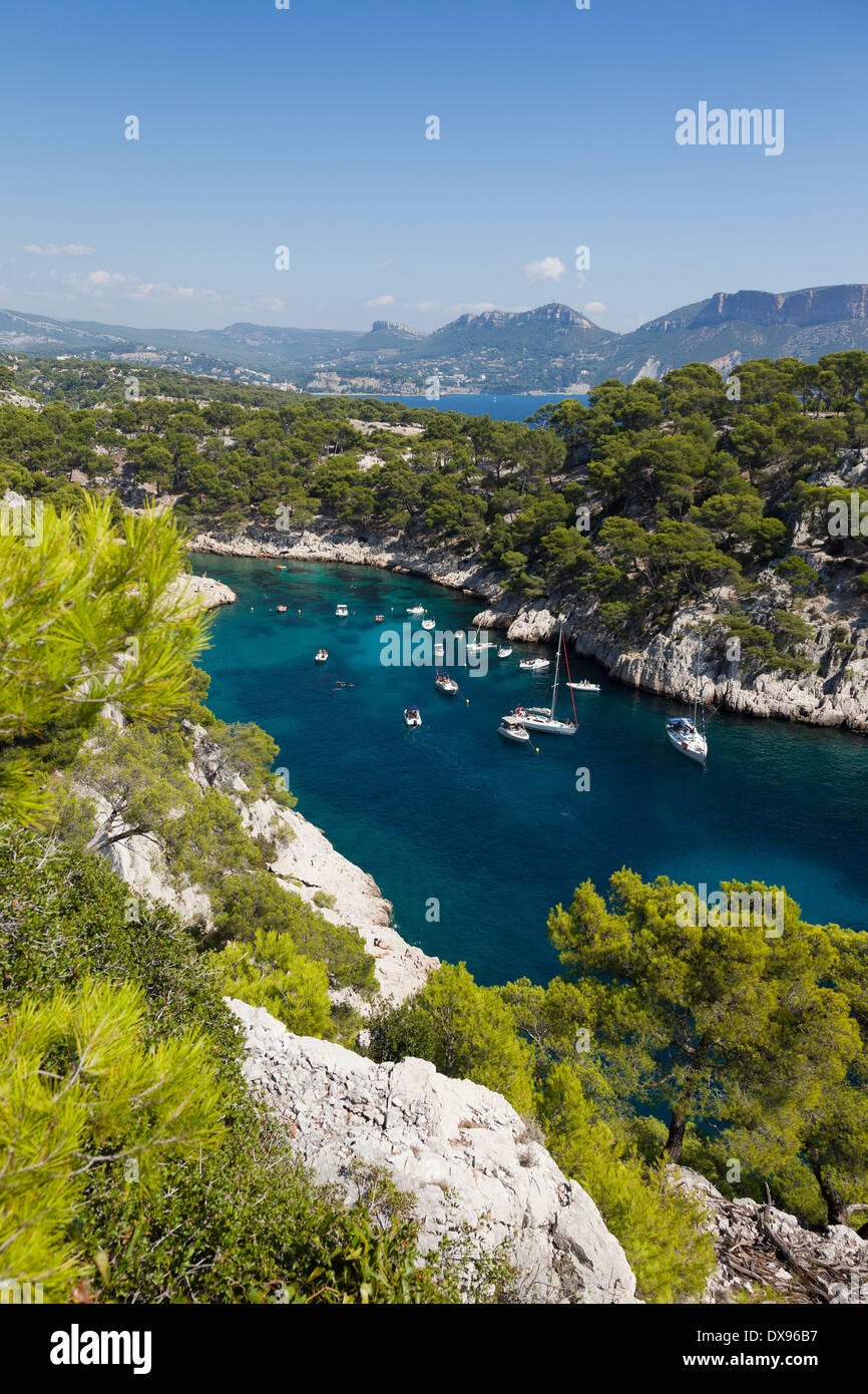 Calanques of Port Pin in Cassis in France - Stock Image