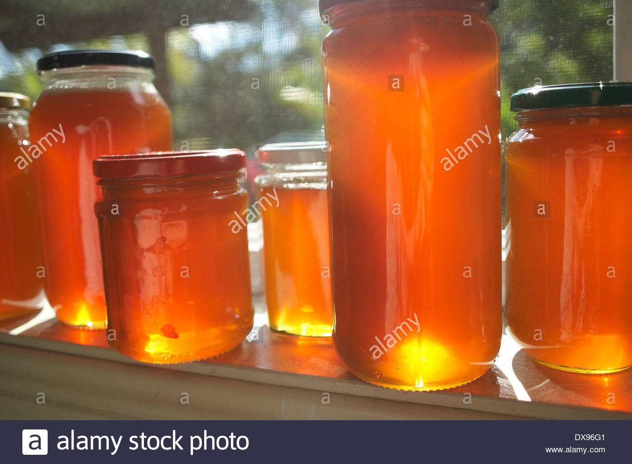 Jars of raw - home produced - unfiltered honey, glowing in the morning sunshine, on a windowsill of a farmhouse; with blurred trees in the background. - Stock Image