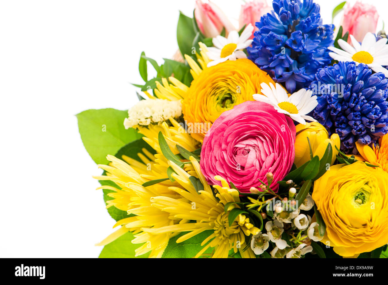 beautiful bouquet of colorful spring flowers in a glass vase. tulip, ranunculus, hyacinth, daisy, gerber - Stock Image
