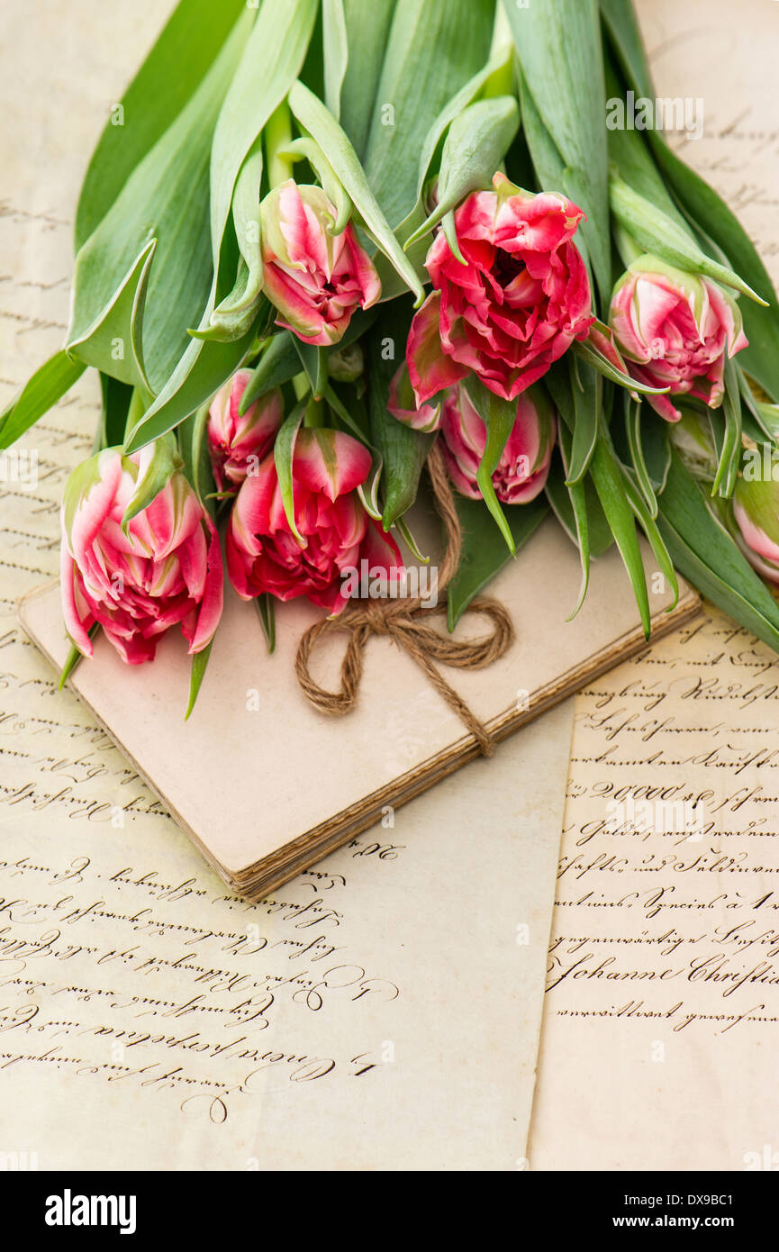 Soft Pink Tulips Old Love Letters And Cards Sentimental Vintage Background With Flowers Papers