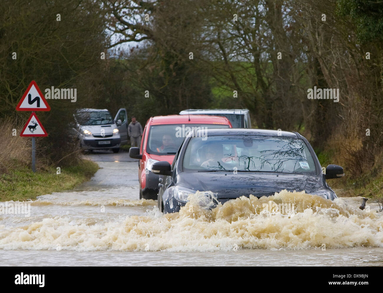 Cars struggle through Floods water in Steeple Bumpstead Essex today after heavy overnight rain 07/02/2014 Pic George Impey - Stock Image
