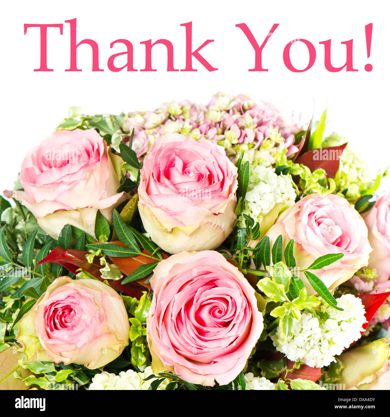 Thank You Card Concept Bouquet Of Pink Roses Stock Photo 67835207