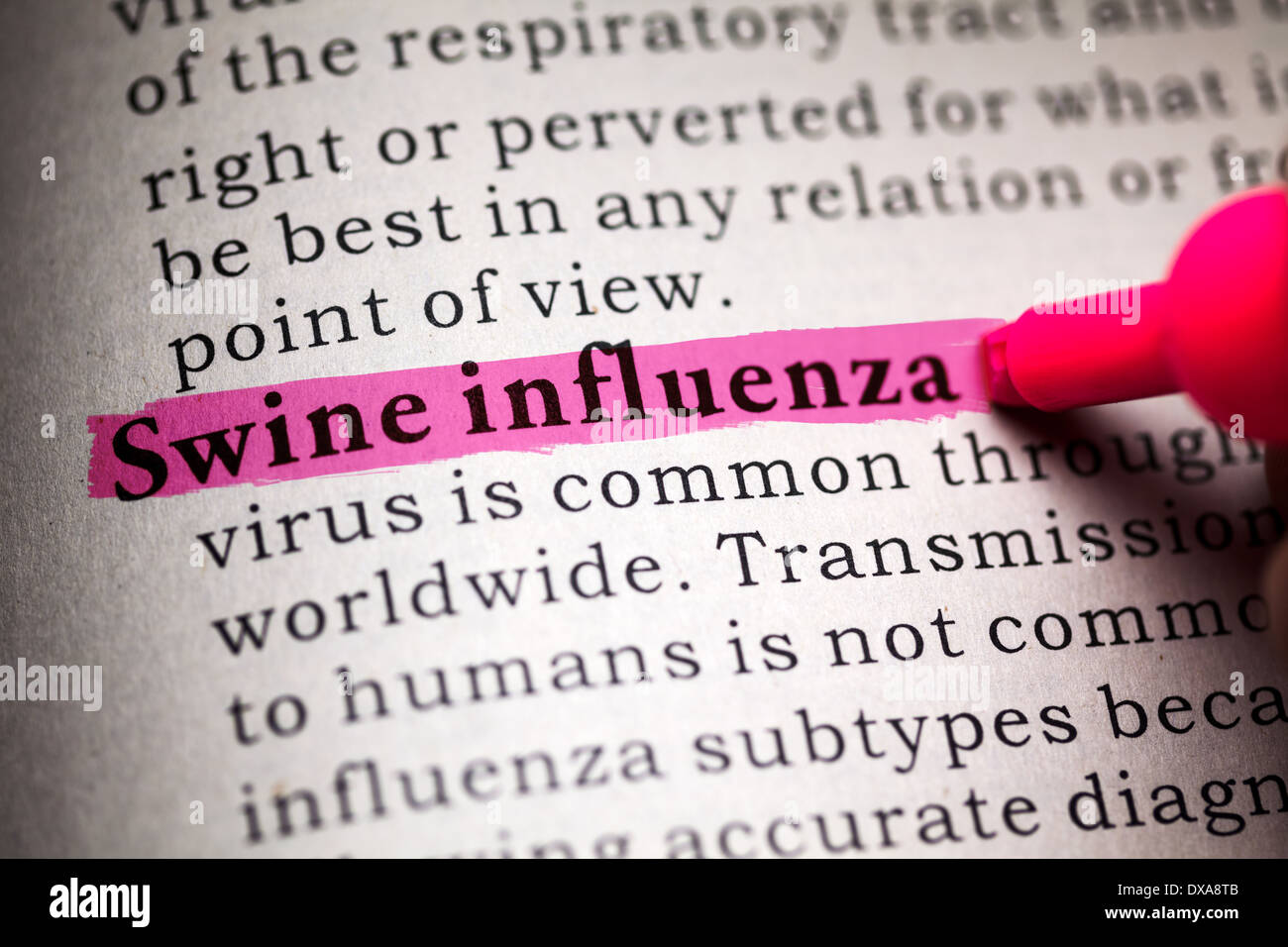 Fake Dictionary, definition of the word Swine influenza. - Stock Image
