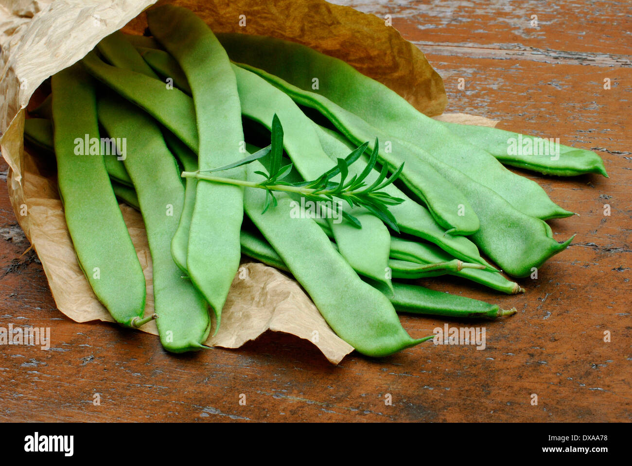 Beans and Summer Savory - Stock Image
