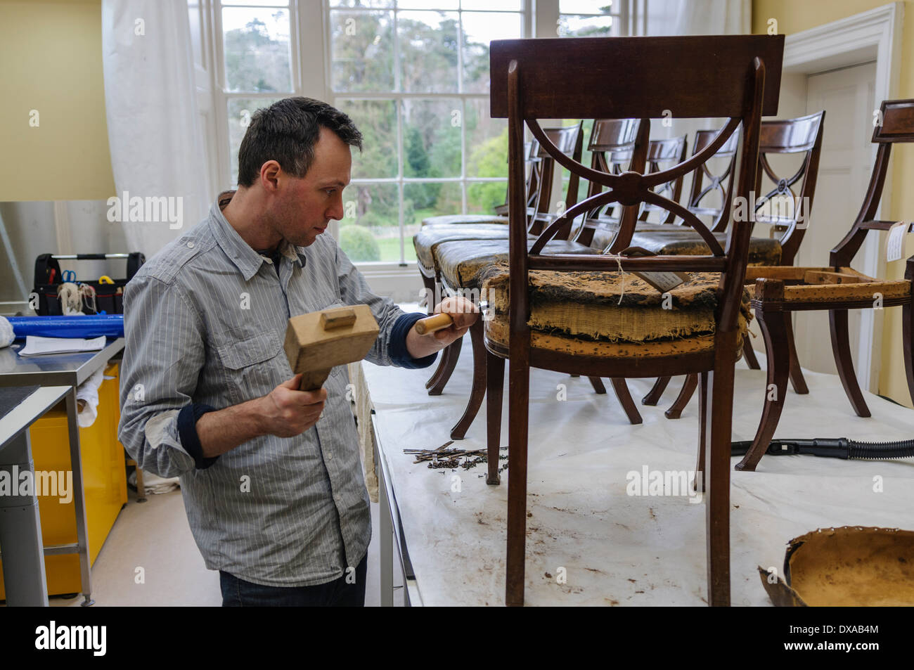 A professional restorer removes the cover and padding from an antique chair - Stock Image