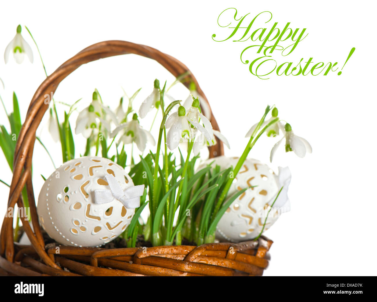 Happy Easter Card Concept Easter Eggs And Spring Flowers Snowdrops