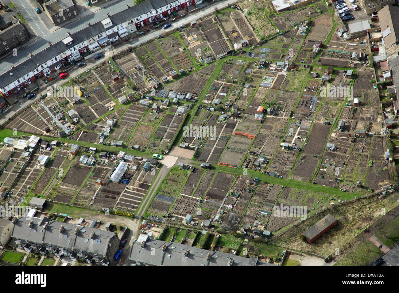 aerial view of some gardening allotments - Stock Image