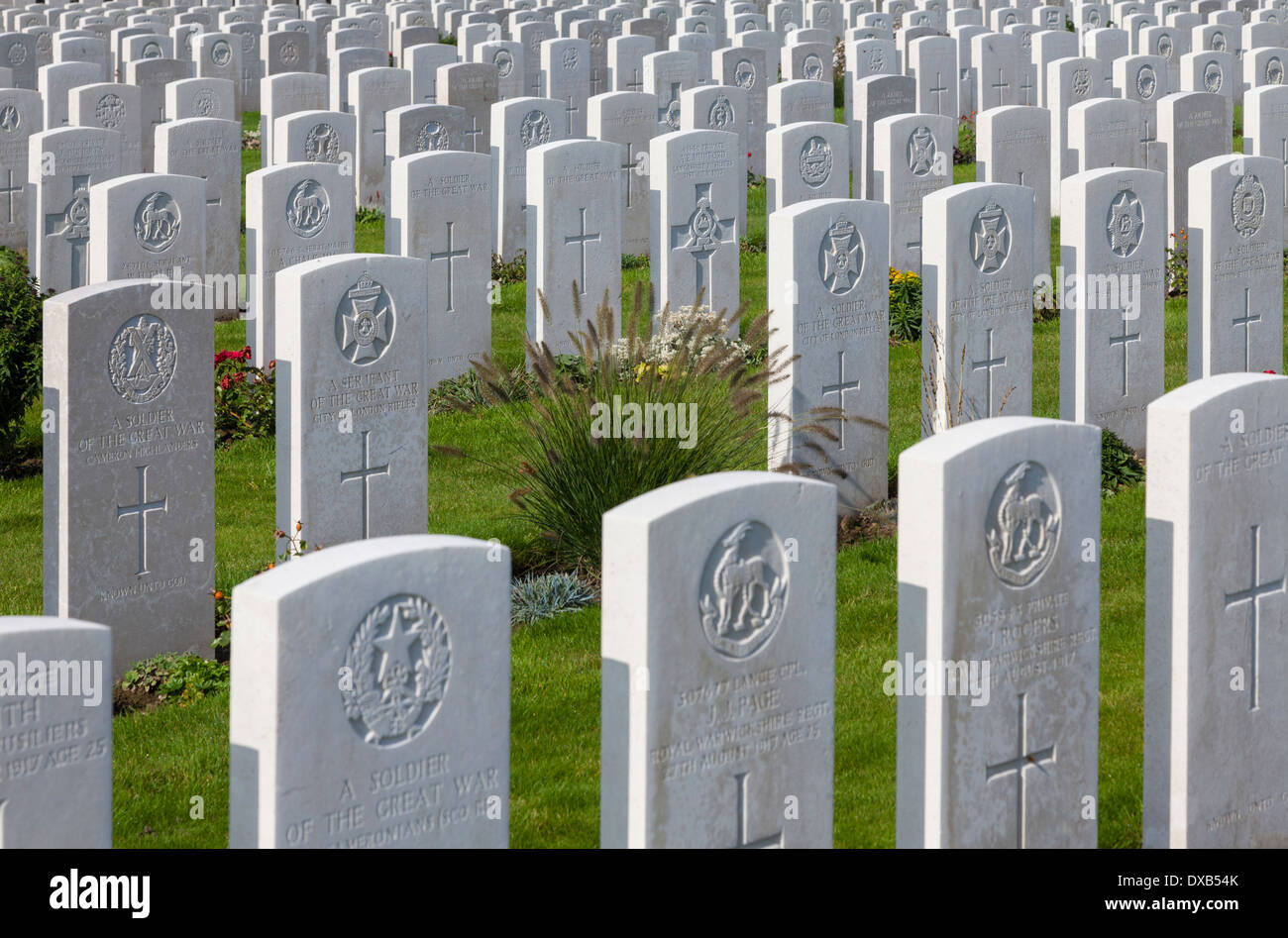 Tyne Cot Commonwealth War Graves Cemetery, Zonnebeke, Belgium - Stock Image
