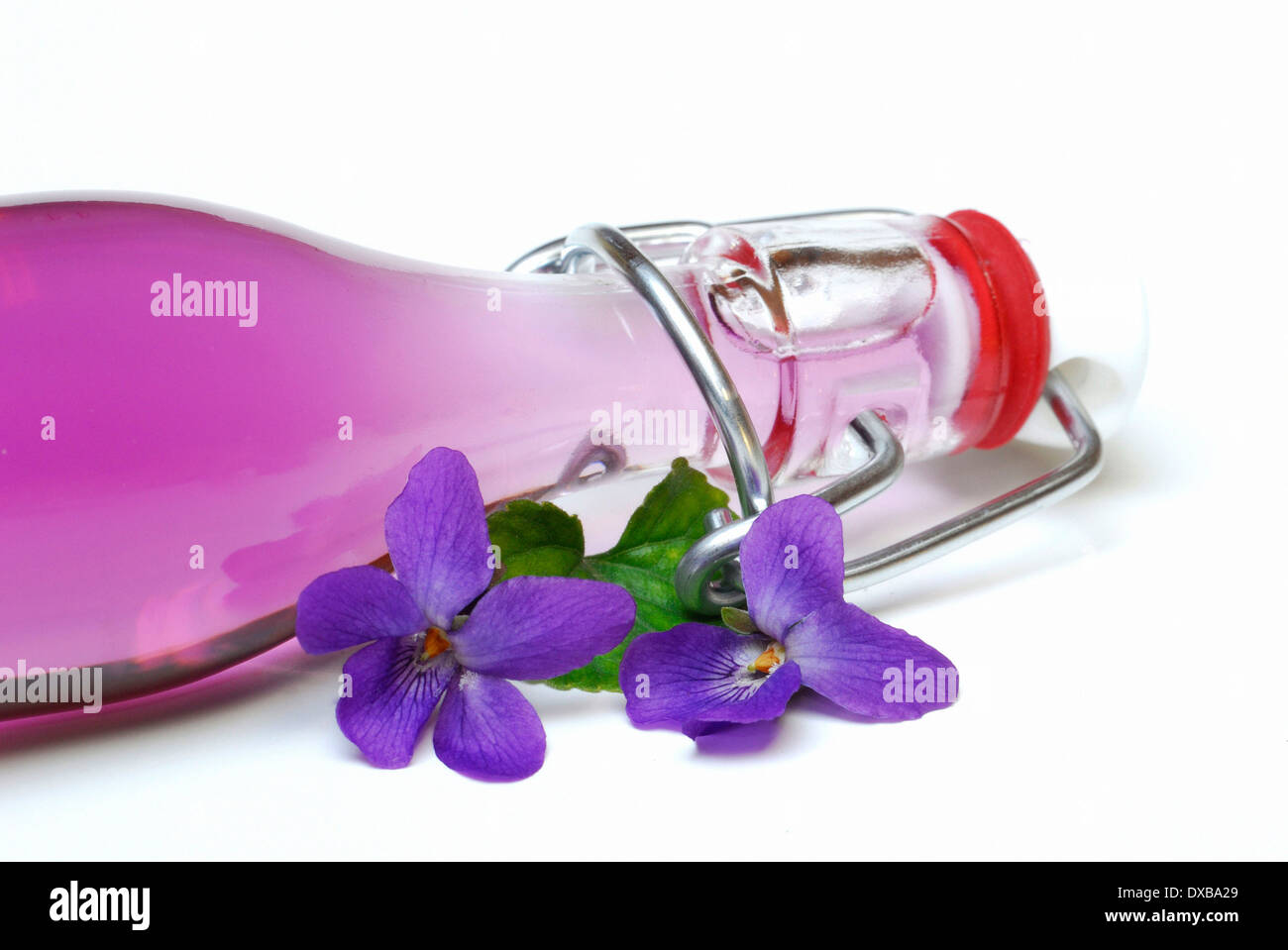 Violet sirup - Stock Image