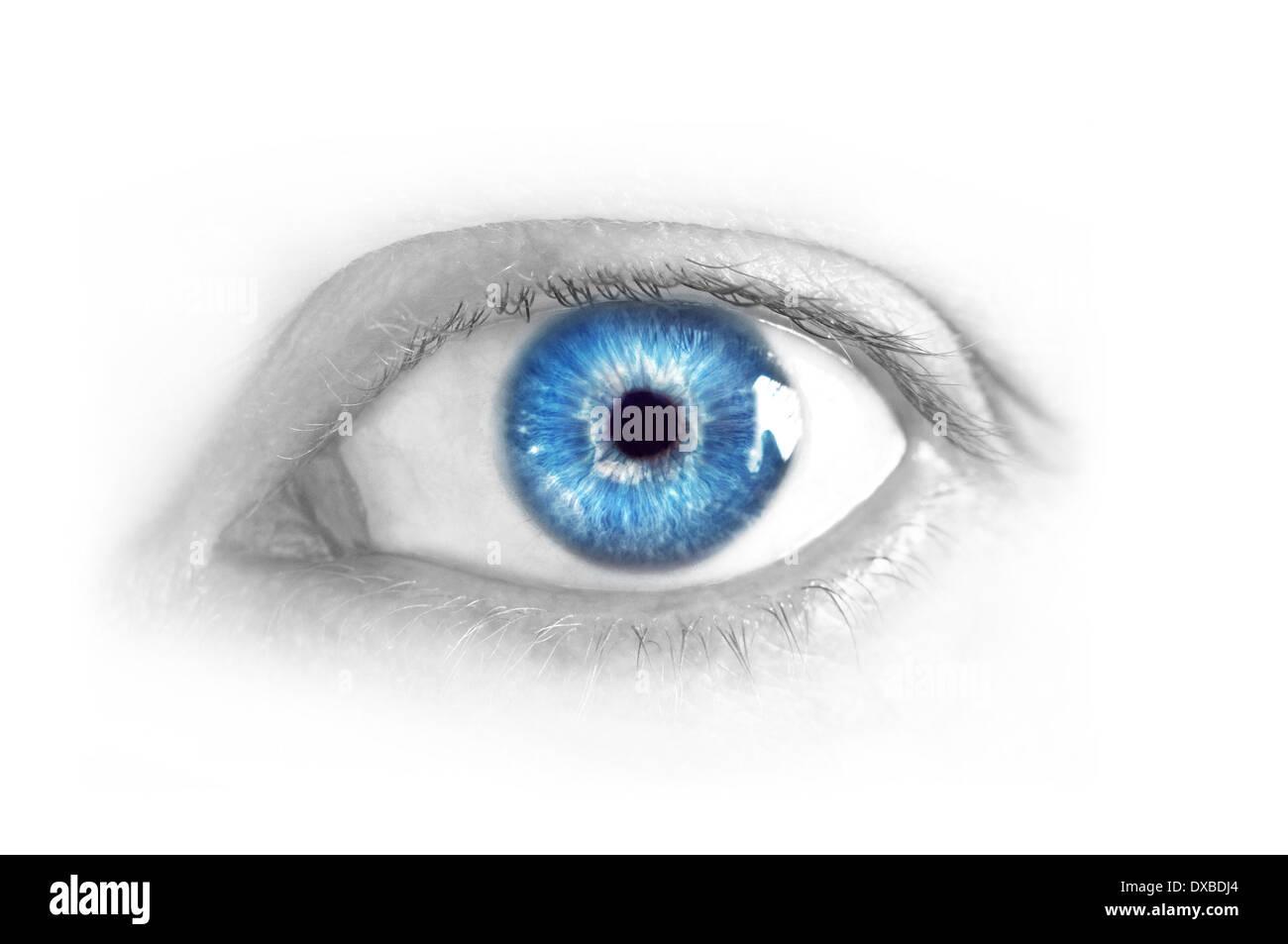 Close Up Of Beautiful Female Blue Eye Without Make Up Stock Photo 67864332 Alamy