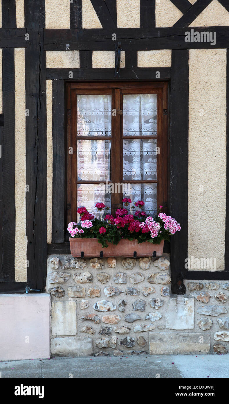 Window and window box with pink and red geraniums in the pretty Normandy village of le Bec Hellouin, France - Stock Image