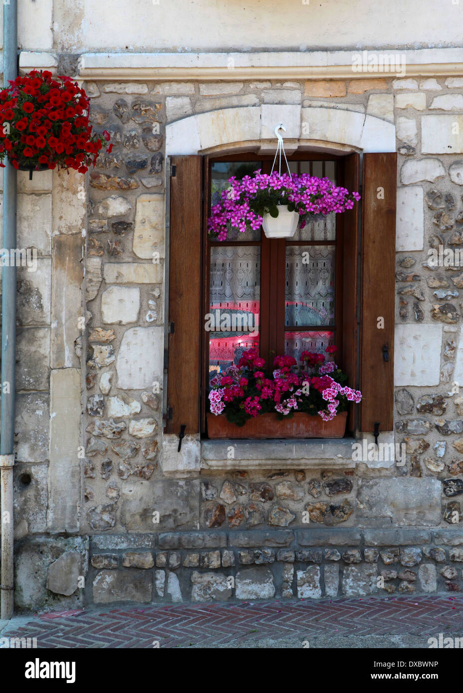 Window with window box, flowers and hanging basket in the pretty village of le Bec Hellouin, Normandy, France - Stock Image