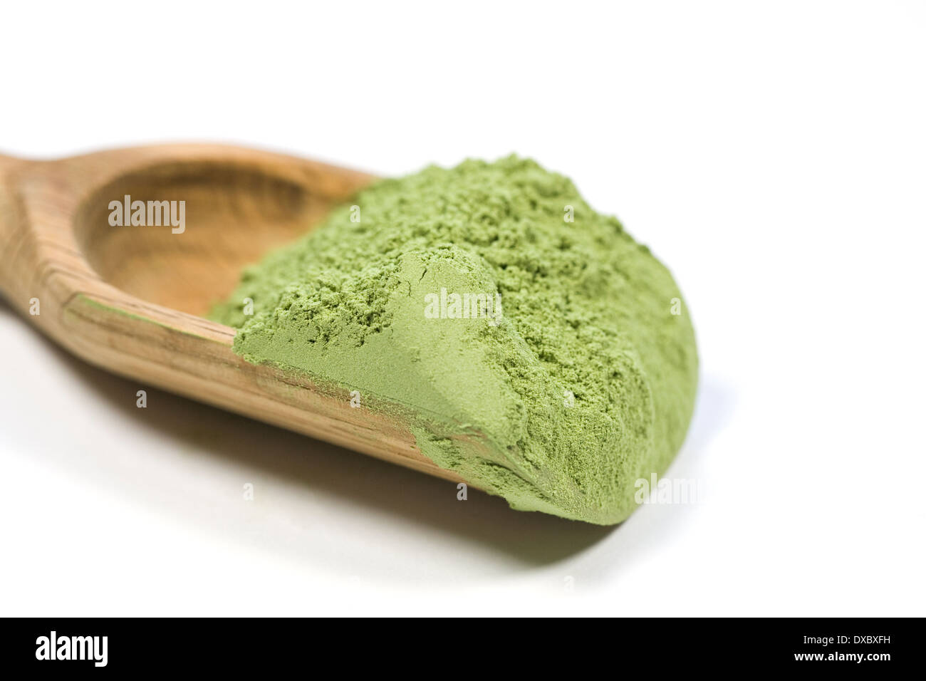 A scoop of Wheatgrass powder. - Stock Image