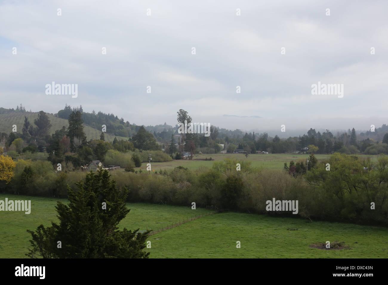A view toward Mount St. Helena from Sebastopol, California. - Stock Image