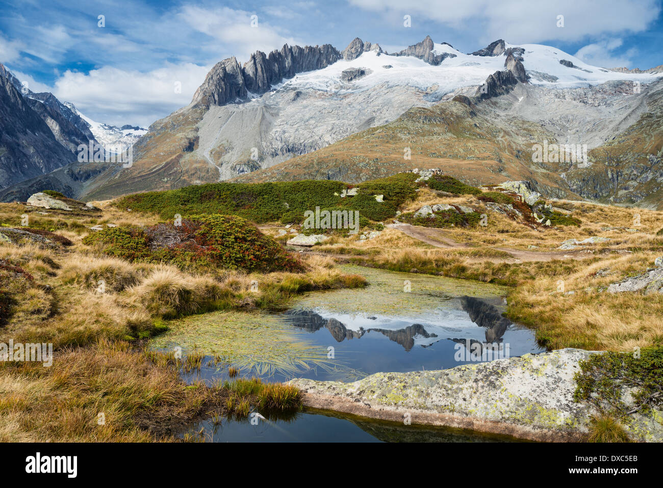 Mountain landscape with water reflection near Riederalp, Valais, Swiss Alps, Switzerland, Europe - Stock Image