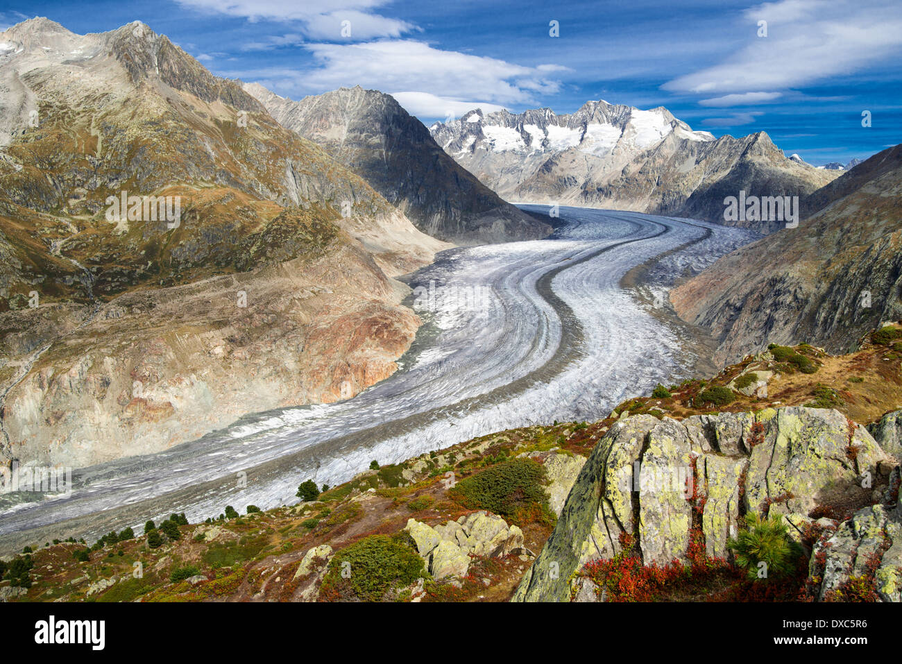 Great Aletsch Glacier, Valais, Swiss Alps, Switzerland, Europe - Stock Image
