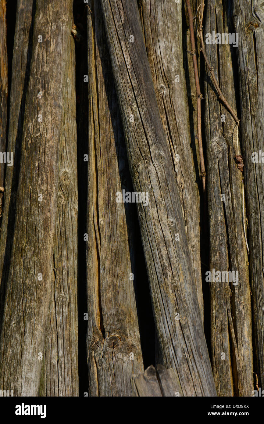 Old wood piles macro close-up background texture full-frame alte Holzstöcke Rebstöcke Makro Nahaufnahme formatfüllend Hochformat - Stock Image