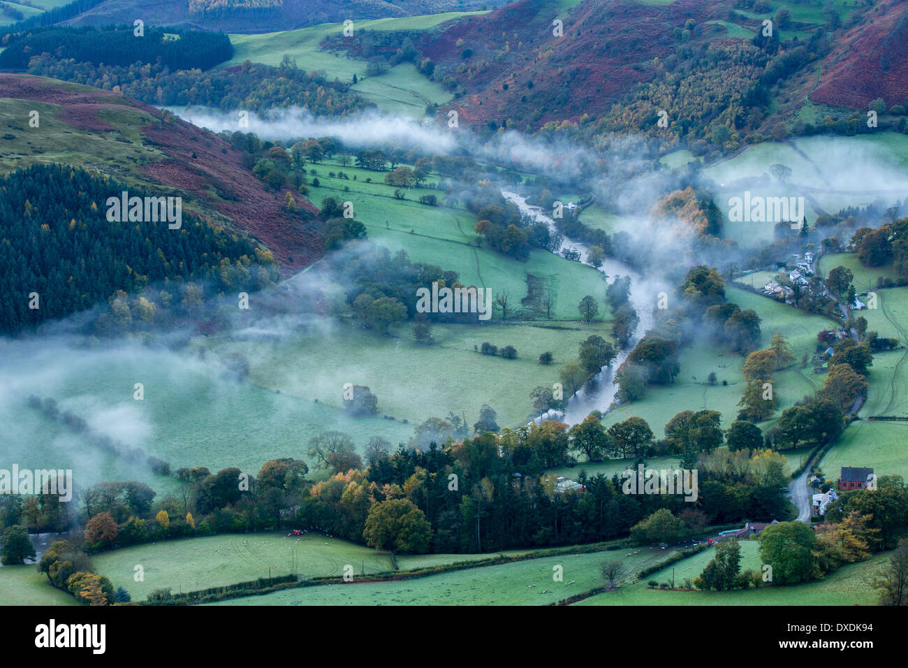 Autumn colours and mist in the Dee Valley (Dyffryn Dyfrdwy) near Llangollen, Denbighshire, Wales - Stock Image
