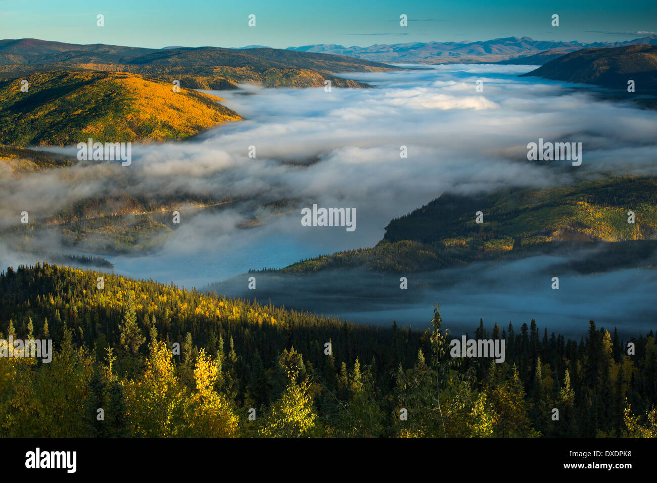 Mist in the valley of the Yukon River at dawn, downstream of Dawson City from Dome Hill, Yukon Territories, Canada - Stock Image
