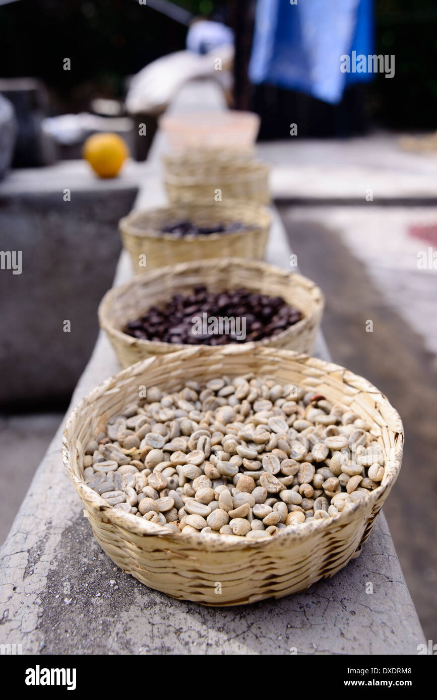 Coffee beans at varying stages in the preparation & roasting process. - Stock Image