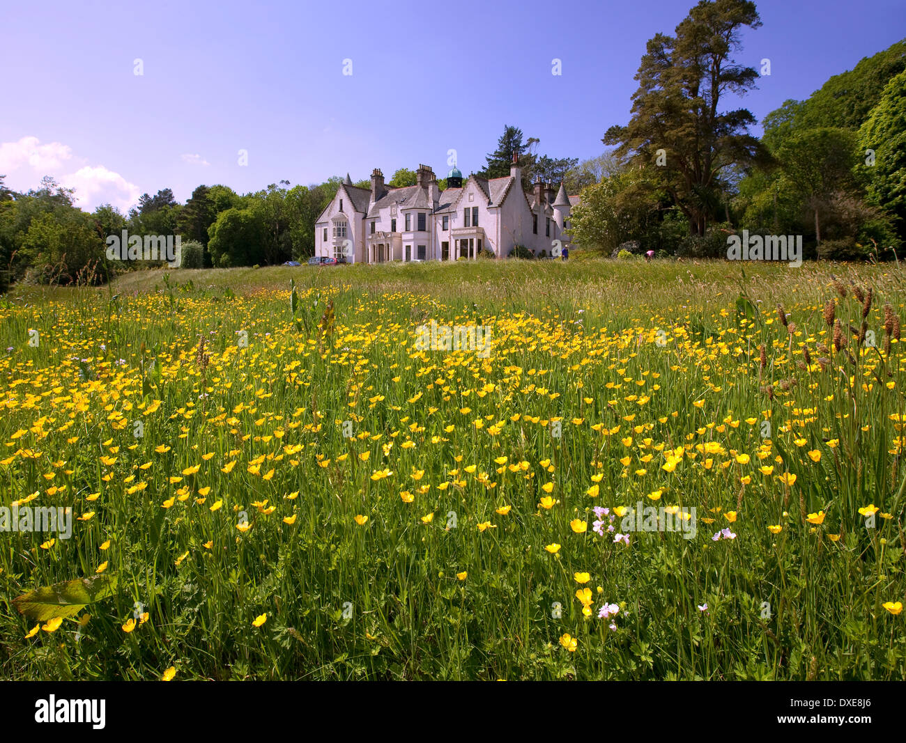 Achmore House, Isle of Gigha - Stock Image