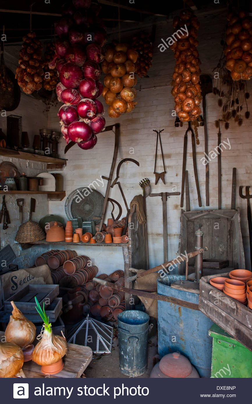 garden tool potting shed tools pots containers interior view onion strings hanging Spring West Dean Sussex rustic rural vintage - Stock Image