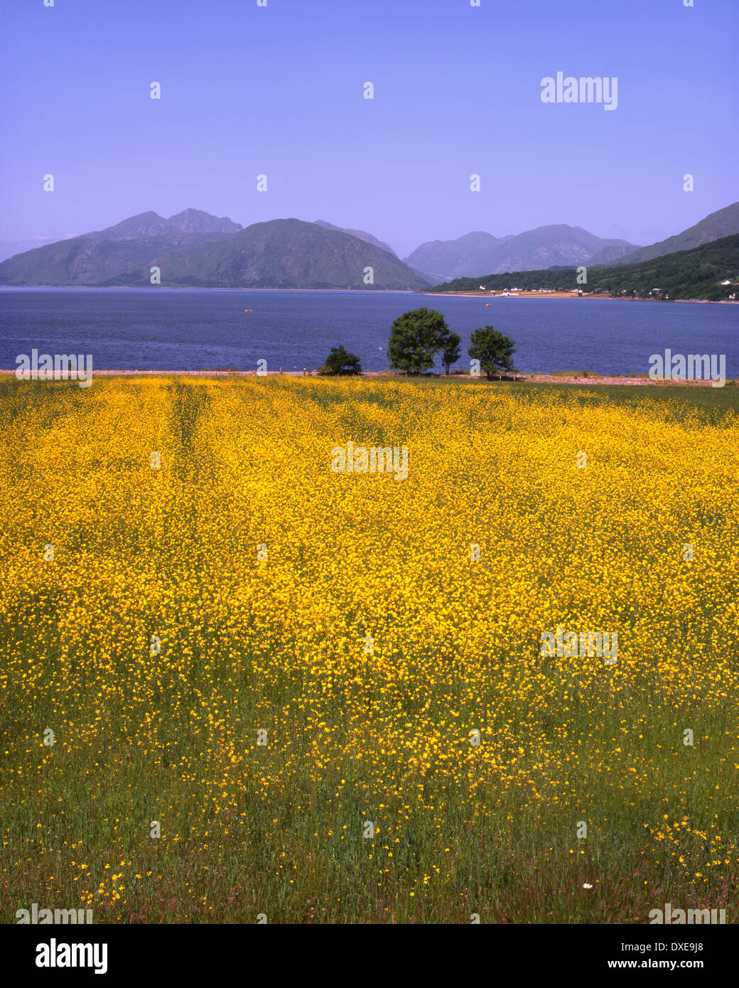 Summer view across Loch Linnhe to the Morvern Hills from North Ballachulish,West Highlands - Stock Image