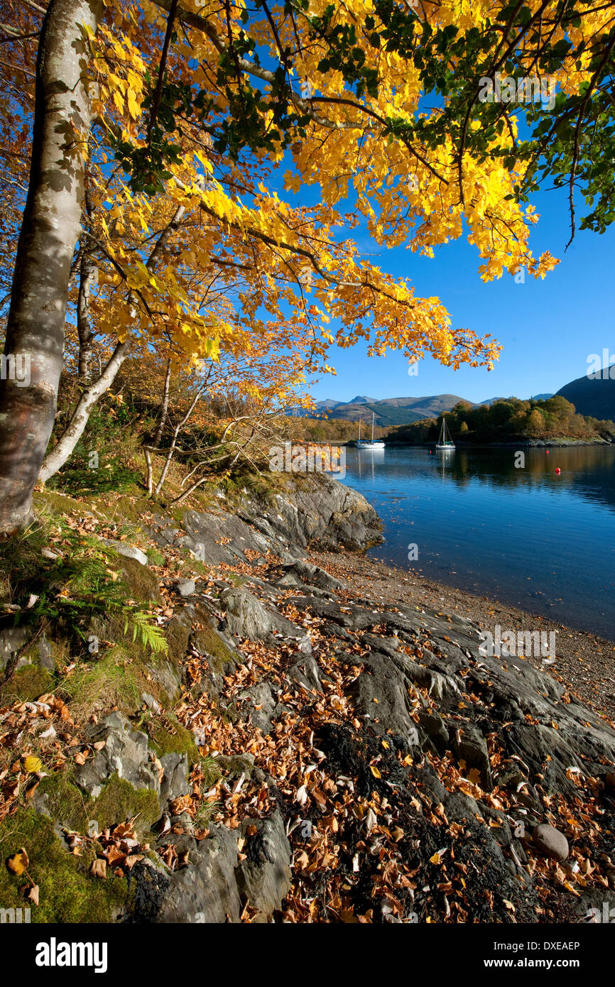 Autumn view from the shore of Bishops bay on loch Leven,Ballachulish,West Highlands. - Stock Image