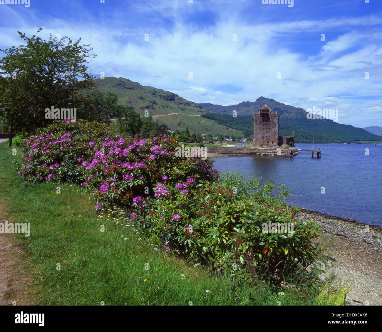 springtime view from shore of Loch Goil towards Carrick castle,Argyllshire,scotland Stock Photo
