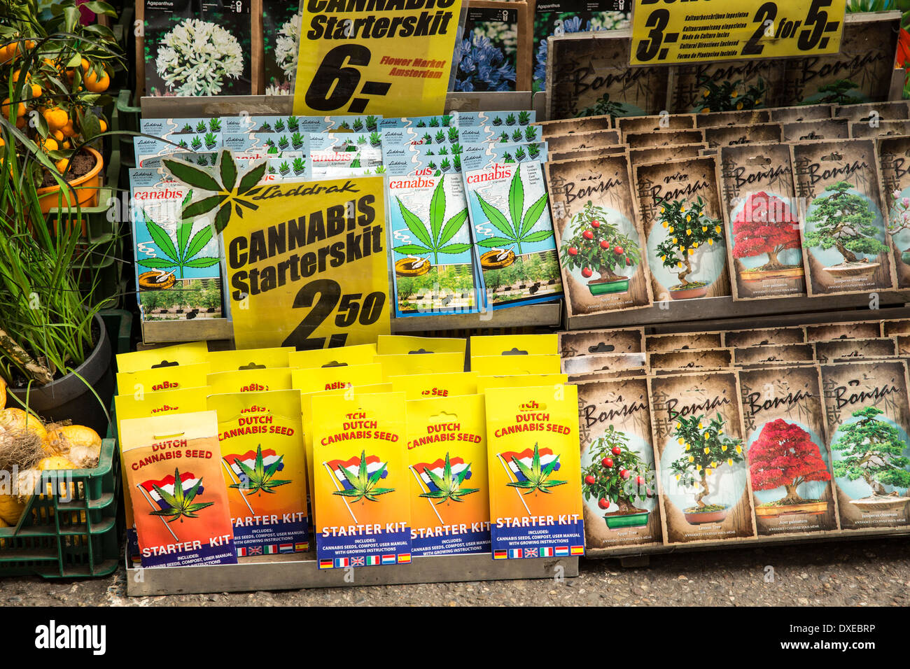 Packets Of Seeds In A Flower Market In Amsterdam Stock Photo