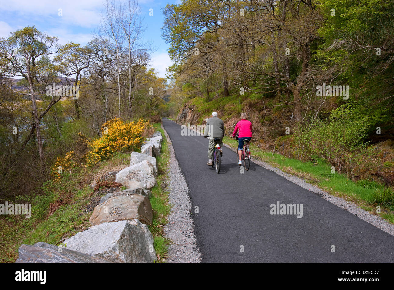 Cylists on new Argyll Cycle routes - Stock Image
