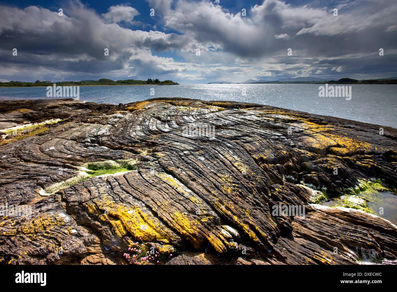 Geology: Folded Phyllites on the southern tip of Isle of Eriska - Stock Image
