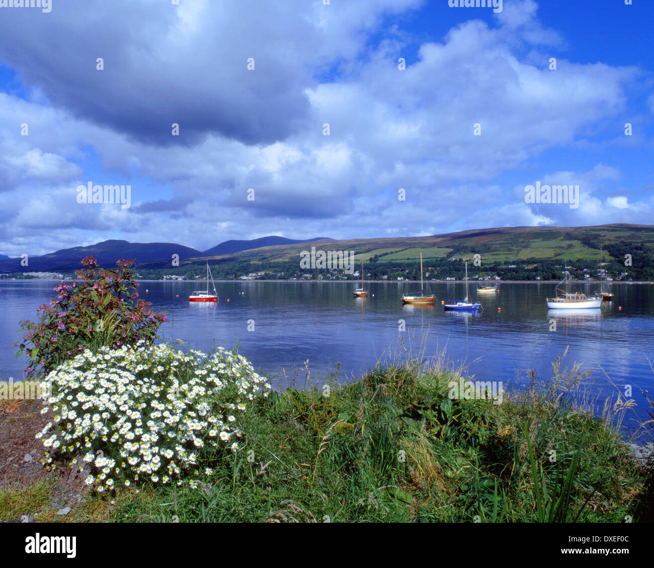 Gareloch on the rosneath peninsula, Clyde. - Stock Image