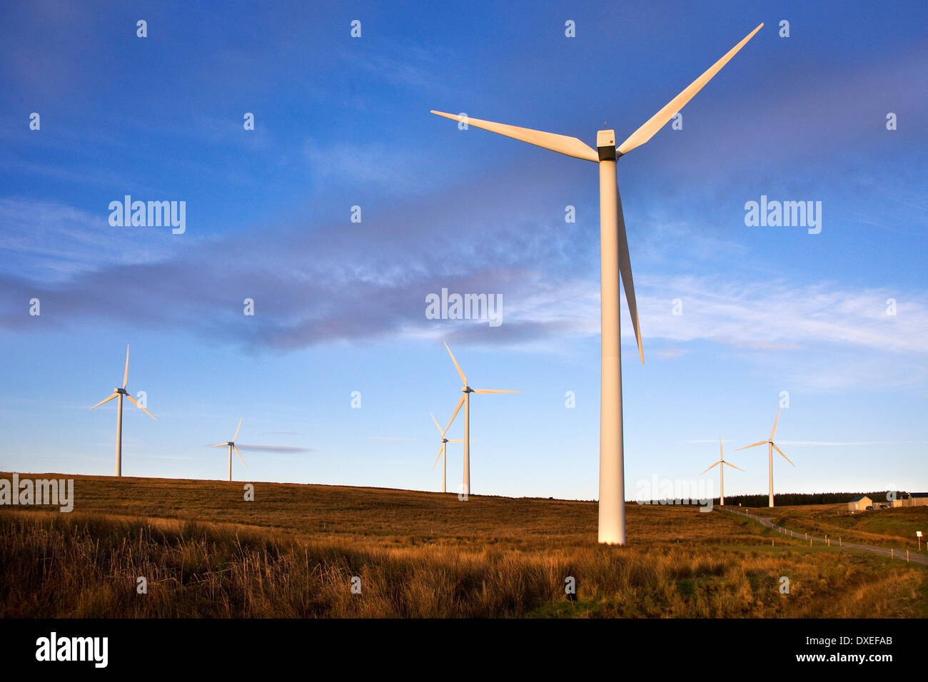 Wind turbines at tangy, Kintyre, Argyll - Stock Image