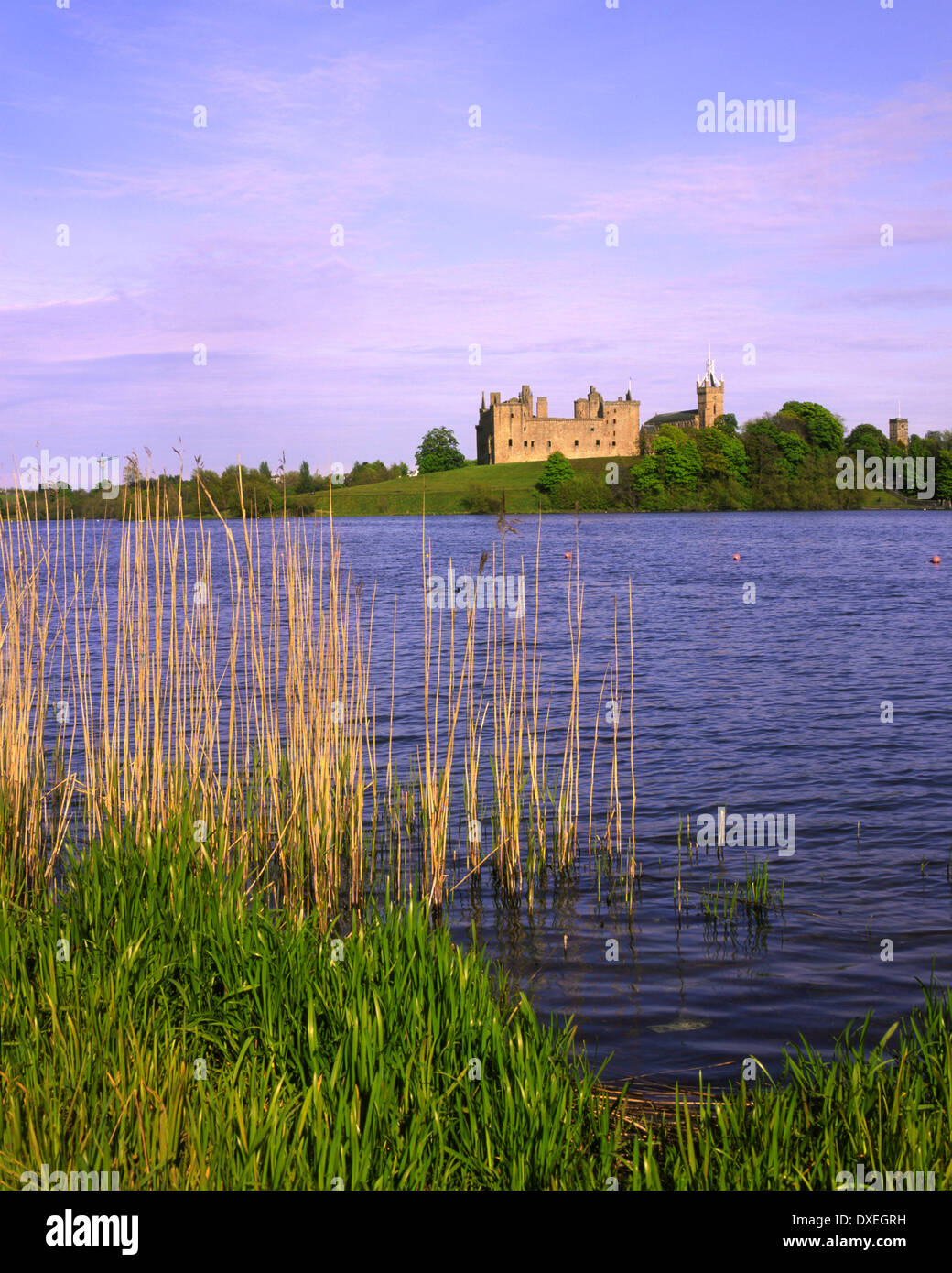 Linlithgow palace from across Linlithgow Loch west Lothian Scotland Stock Photo
