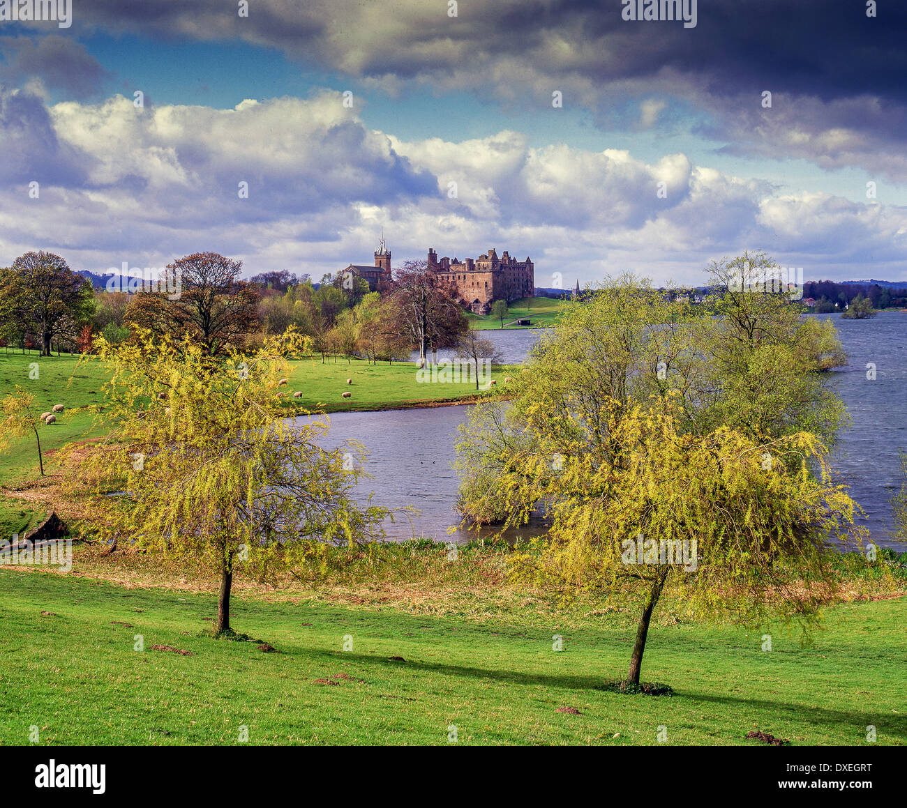 Summer view of Linlithgow Palace and Linlithgow Lake, West Lothian Stock Photo