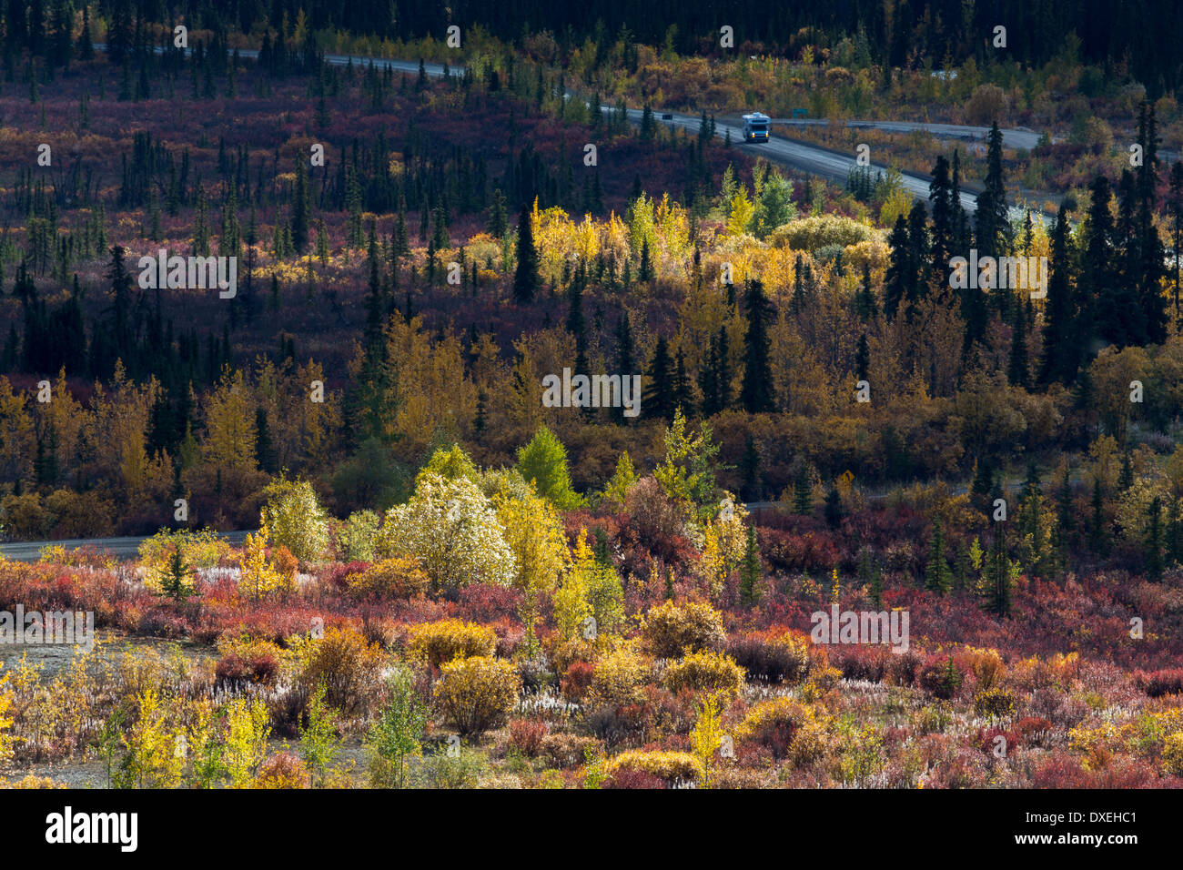 The Dempster Highway, Tombstone Territorial Park, Yukon Territories, Canada - Stock Image