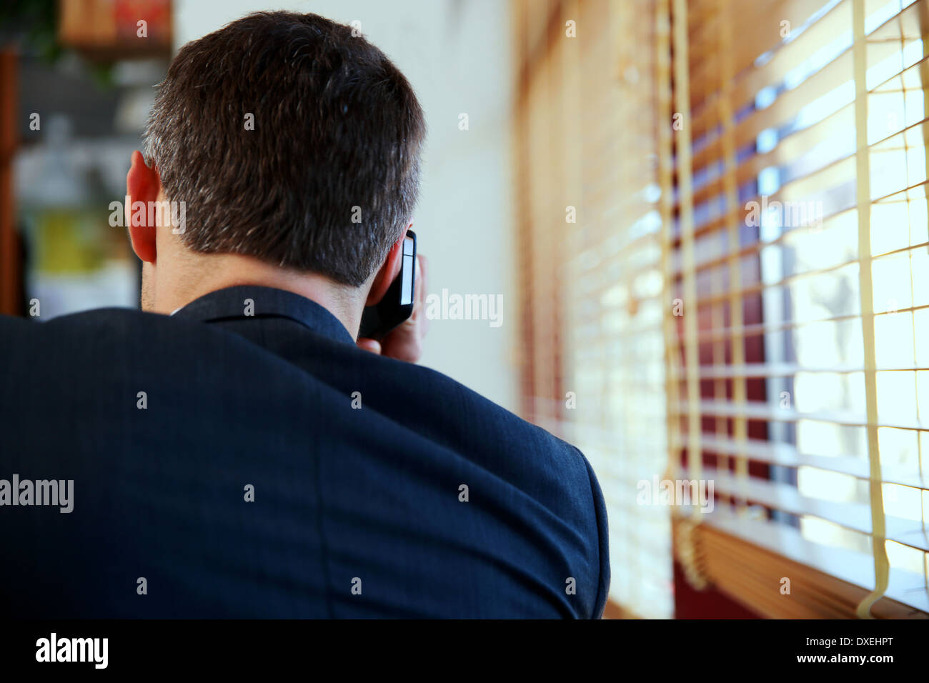 Back view portrait of a businessman talking on the phone at office - Stock Image