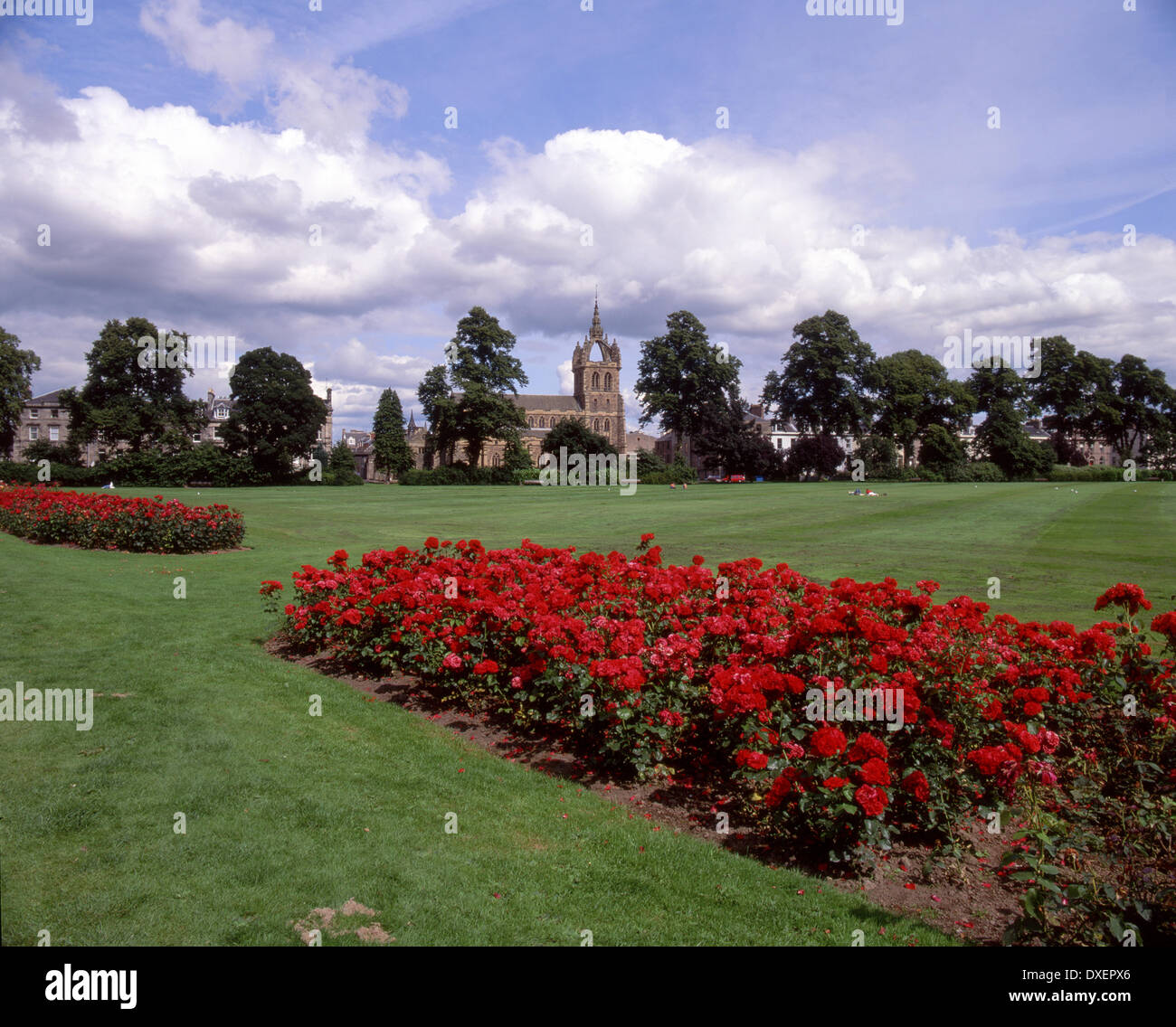 Summer across the south Inches towards Marshall Place, City of Perth. - Stock Image