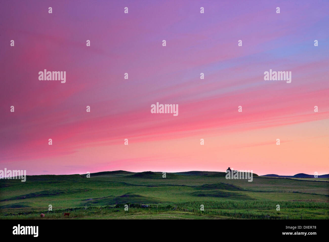 Sunset afterglow over isolated cottage on the island of Islay - Stock Image