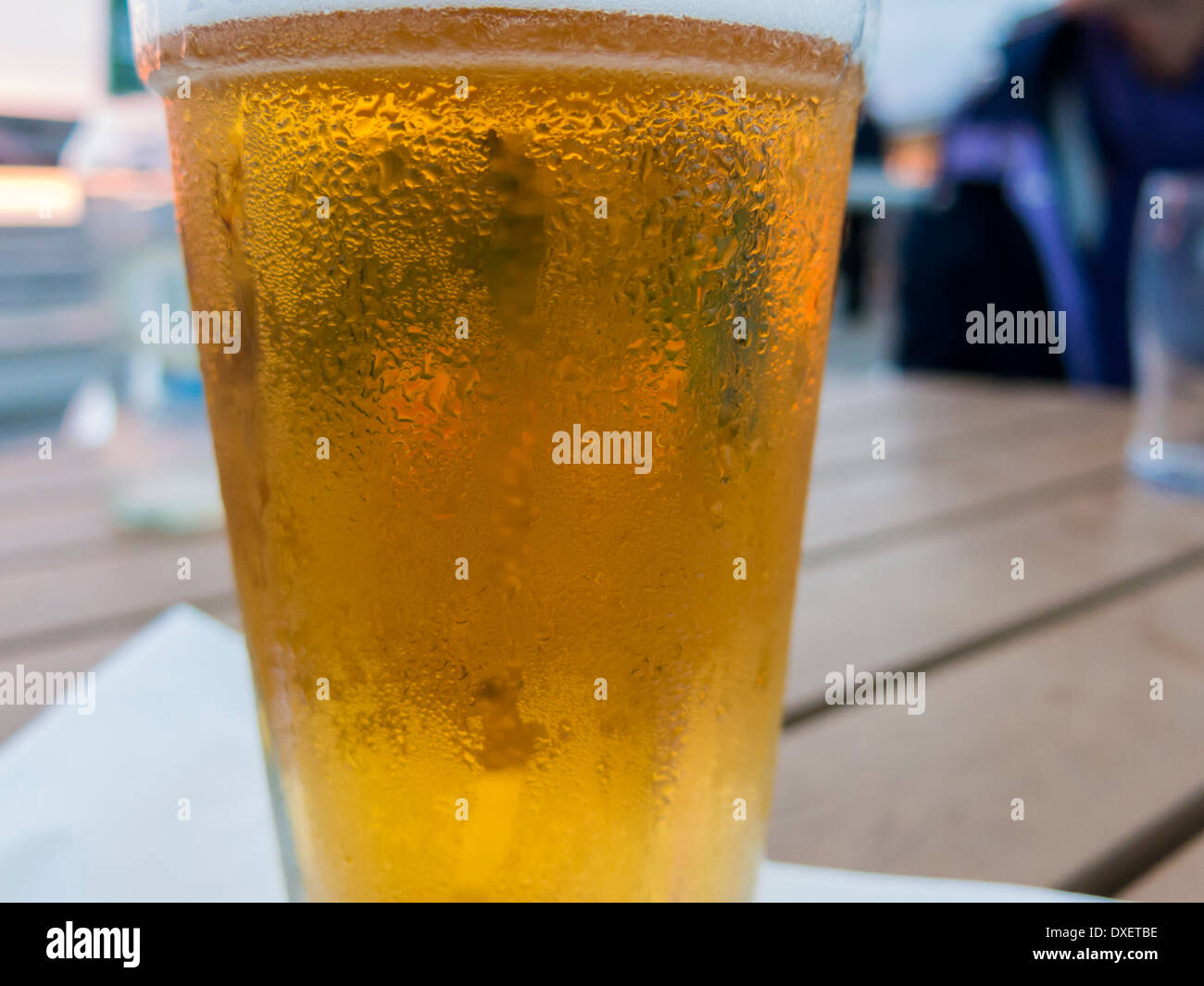 Cold pint glass full of lager on table Cromer England - Stock Image