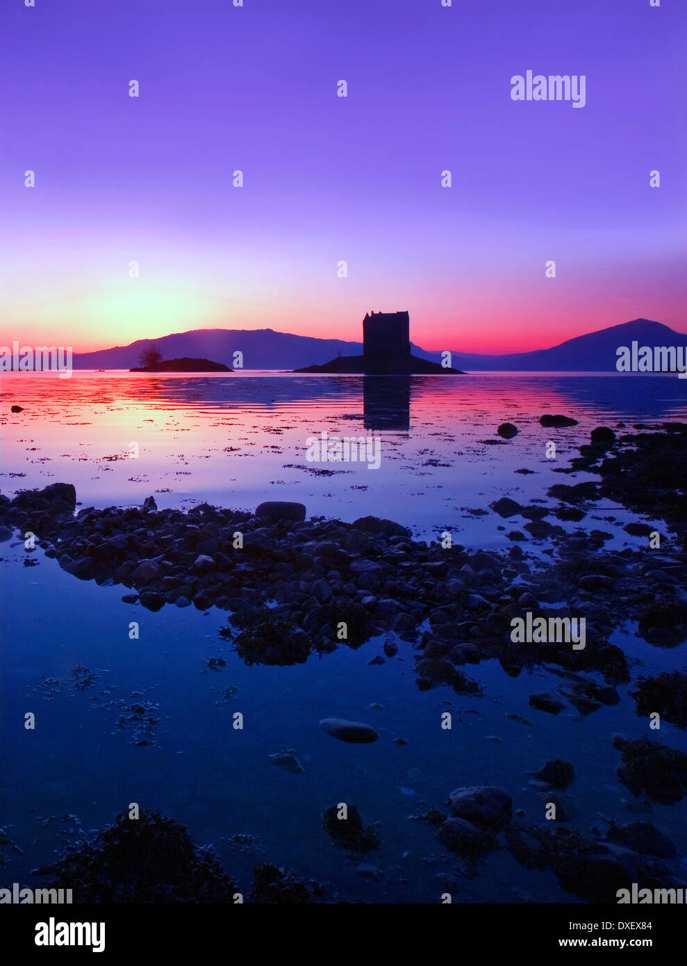 Sunset afterglow over Castle Stalker and the Morvern Hills, Appin, Argyll - Stock Image